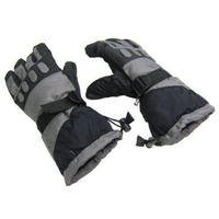 Zero Degree Waterproof Thinsulate Adult SKI GLOVES Pair New ZE0003